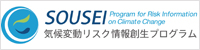 Program for Risk Information on Climate Change (SOUSEI)